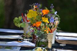 Sunol Wildflower Festival, Sunol, CA, USA - Picture 12