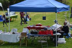 Sunol Wildflower Festival, Sunol, CA, USA - Picture 25