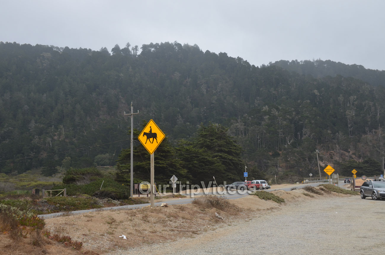 Big Basin Redwoods State Park - Waddell Beach, Davenport, CA, USA - Picture 11 of 25