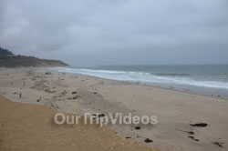 Big Basin Redwoods State Park - Waddell Beach, Davenport, CA, USA - Picture 4
