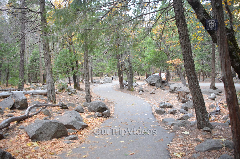 Yosemite National Park - Bridalveil Fall, Yosemite Valley, CA, USA - Picture 18 of 25