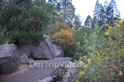 Yosemite National Park - Bridalveil Fall, Yosemite Valley, CA, USA - Picture 13