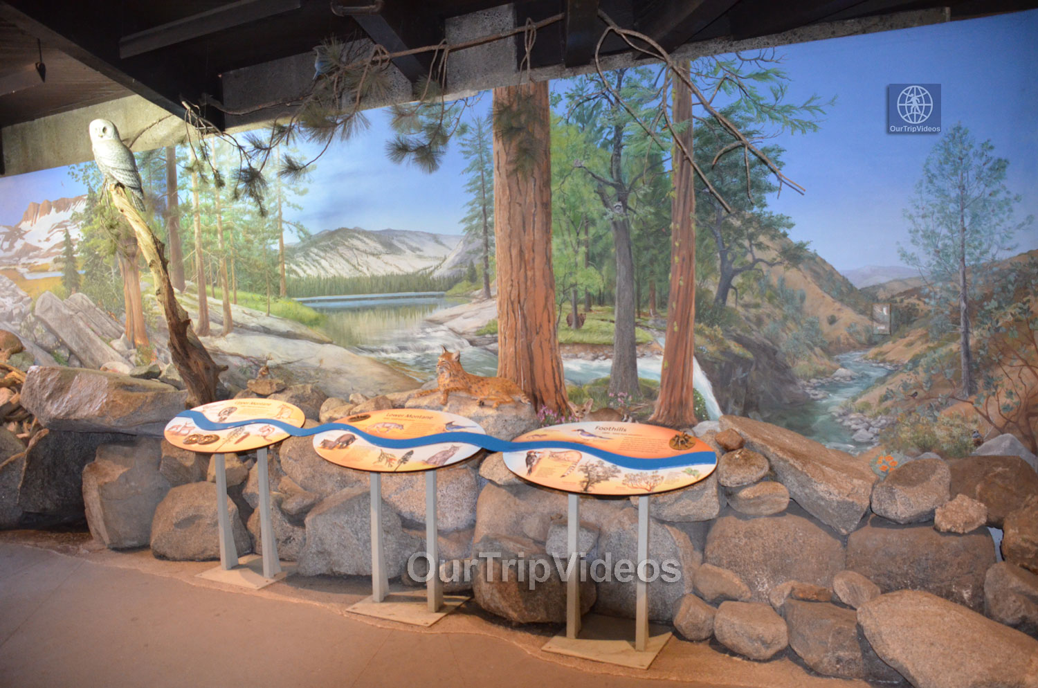 Yosemite National Park - Valley Visitor Center, Yosemite Valley, CA, USA - Picture 21 of 25