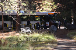 Yosemite National Park - Valley Visitor Center, Yosemite Valley, CA, USA - Picture 1
