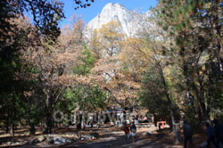 Yosemite National Park - Valley Visitor Center, Yosemite Valley, CA, USA - Picture 5