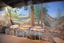Yosemite National Park - Valley Visitor Center, Yosemite Valley, CA, USA - Picture 21