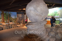 Yosemite National Park - Valley Visitor Center, Yosemite Valley, CA, USA - Picture 23