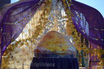 Ganesh Utsav, San Jose, CA, USA - Picture 16