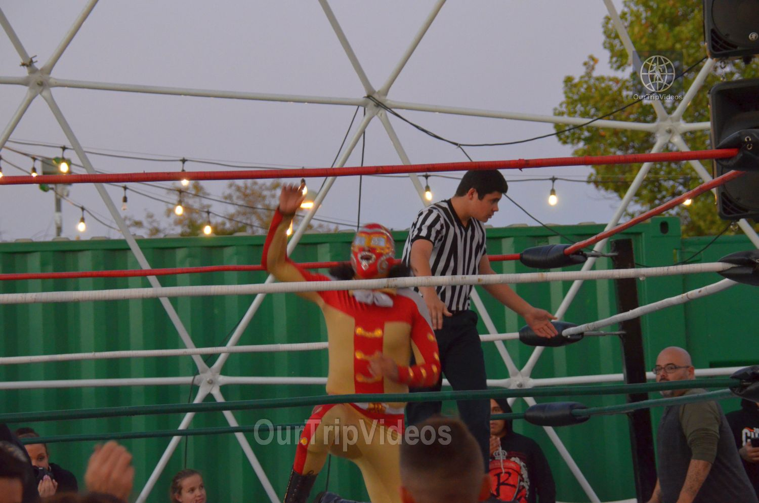 Throwdown at the Thunderdome (Luchador Wrestling), Fremont, CA, USA - Picture 17 of 25