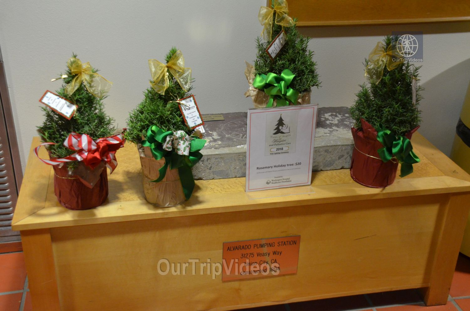 Trees of Angels Celebrations by WHHS, Union City, CA, USA - Picture 19 of 25