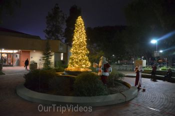 Trees of Angels Celebrations by WHHS, Union City, CA, USA - Picture 5