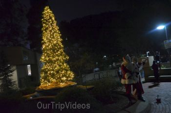 Trees of Angels Celebrations by WHHS, Union City, CA, USA - Picture 6