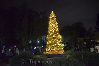 Pictures of Trees of Angels Celebrations by WHHS, Union City, CA, USA