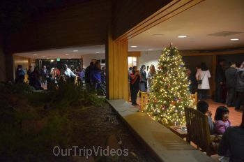 Trees of Angels Celebrations by WHHS, Union City, CA, USA - Picture 16