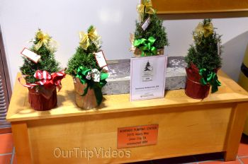 Trees of Angels Celebrations by WHHS, Union City, CA, USA - Picture 19