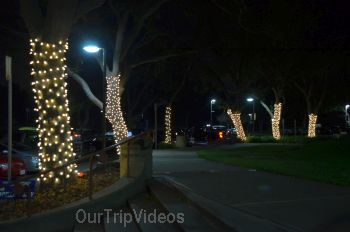 Trees of Angels Celebrations by WHHS, Union City, CA, USA - Picture 20