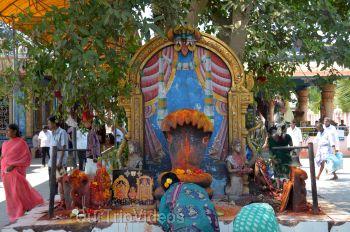 Sri Venkateswara Swamy Temple (Vaikunta Puram), Tenali, AP, India - Picture 13