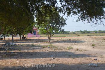 Pandillamma Temple (Pandillapalli), Vetapalem, AP, India - Picture 10