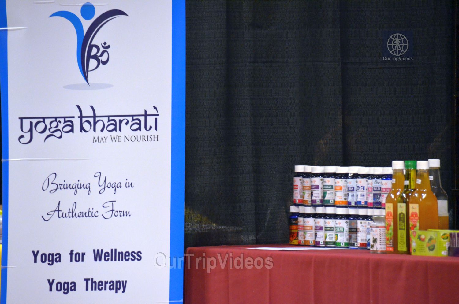 Indo-American Wellness Conclave and Exhibition, Santa Clara, CA, USA - Picture 11 of 25