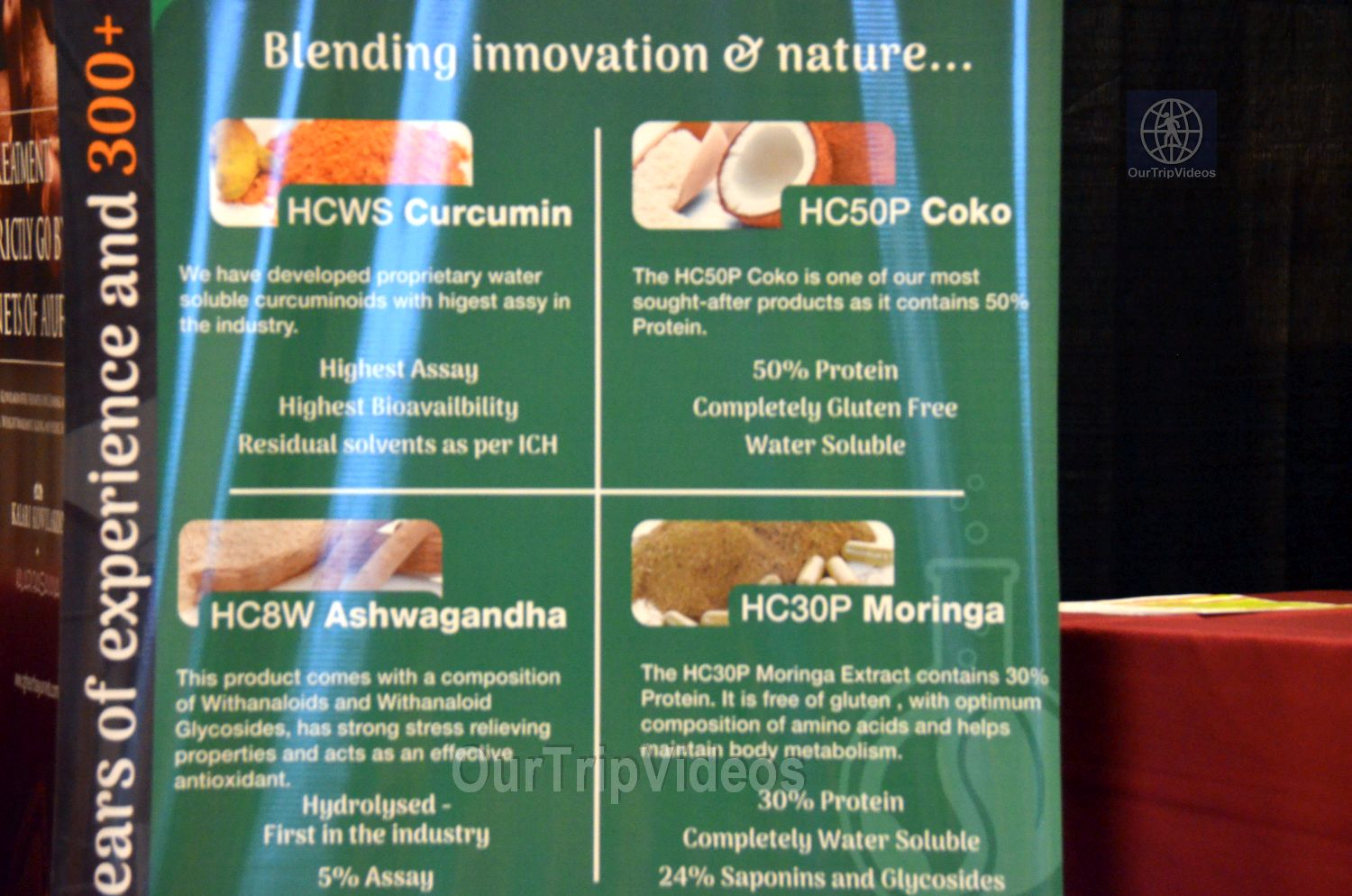 Indo-American Wellness Conclave and Exhibition, Santa Clara, CA, USA - Picture 13 of 25