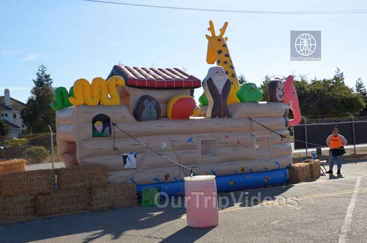 The Alameda Point Pumpkin Patch, Alameda, CA, USA - Picture 26 of 50