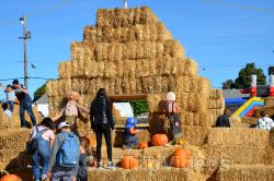 The Alameda Point Pumpkin Patch, Alameda, CA, USA - Pictures