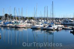 Ballena Blvd and Shore Line Dr, Alameda, CA, USA - Picture 8