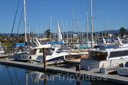 Ballena Blvd and Shore Line Dr, Alameda, CA, USA - Picture 13