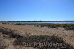 Ballena Blvd and Shore Line Dr, Alameda, CA, USA - Picture 24