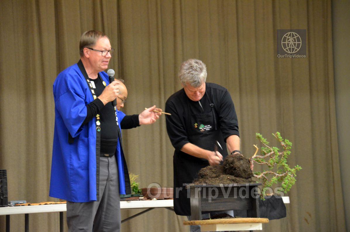 Annual Bonsai Exhibition, Union City, CA, USA - Picture 67 of 75