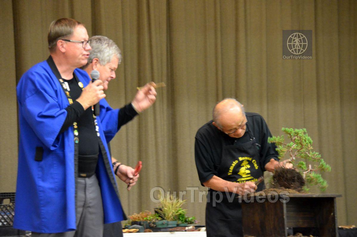 Annual Bonsai Exhibition, Union City, CA, USA - Picture 68 of 75