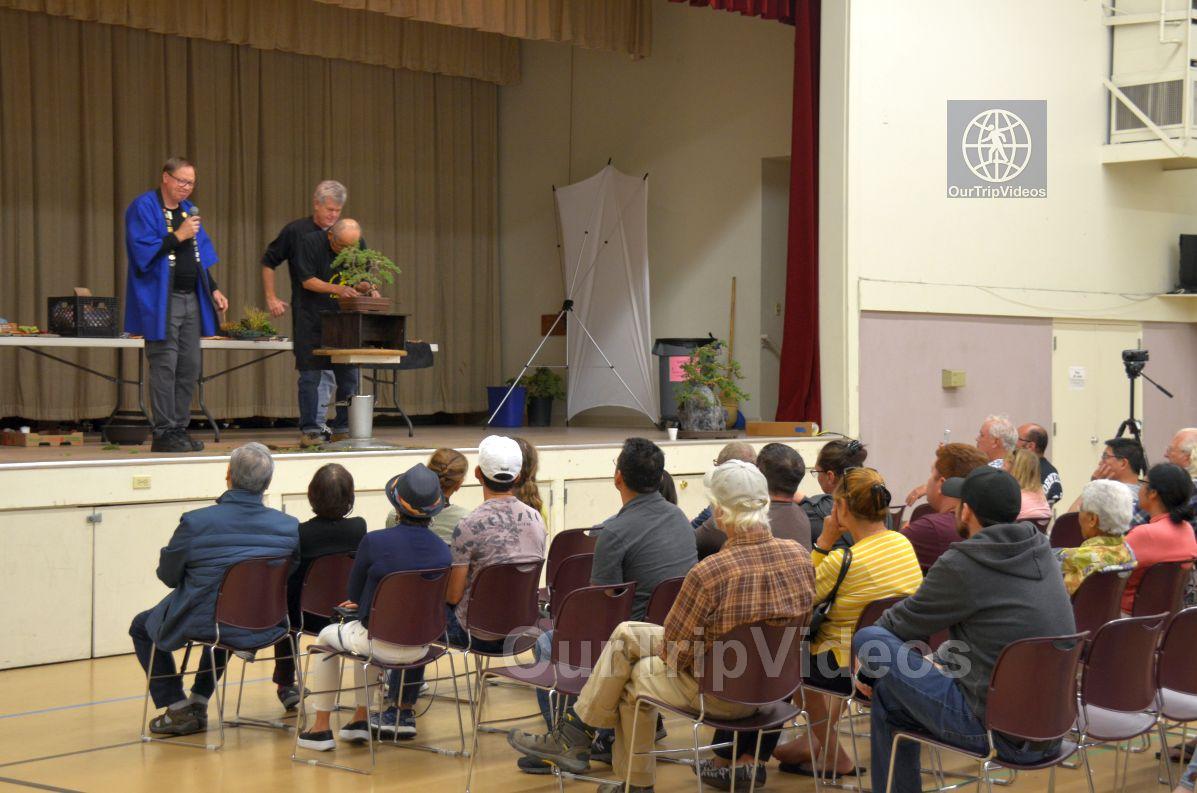 Annual Bonsai Exhibition, Union City, CA, USA - Picture 69 of 75