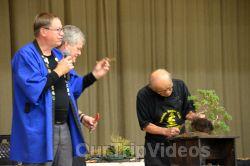 Annual Bonsai Exhibition, Union City, CA, USA - Picture 68