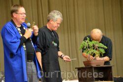 Annual Bonsai Exhibition, Union City, CA, USA - Picture 70
