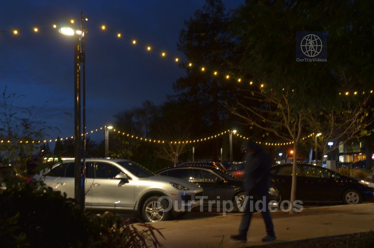Annual Chanukah Lighting - Menorah of Warmth, Fremont, CA, USA - Picture 57 of 75