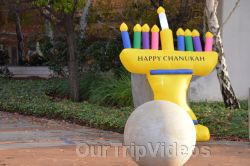 Annual Chanukah Lighting - Menorah of Warmth, Fremont, CA, USA - Picture 1