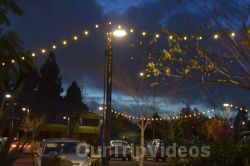 Annual Chanukah Lighting - Menorah of Warmth, Fremont, CA, USA - Picture 56