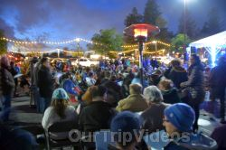 Annual Chanukah Lighting - Menorah of Warmth, Fremont, CA, USA - Picture 58