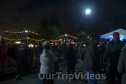 Annual Chanukah Lighting - Menorah of Warmth, Fremont, CA, USA - Picture 67