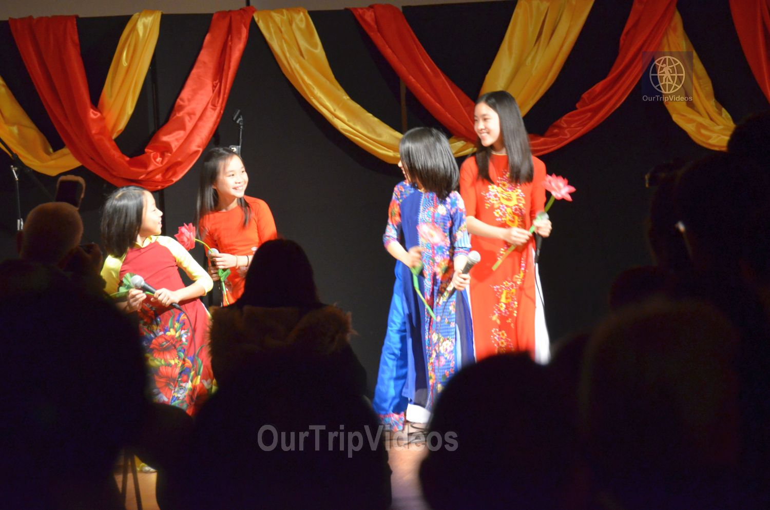 Chinese Lunar New Year Celebration, Milpitas, CA, USA - Picture 15 of 25