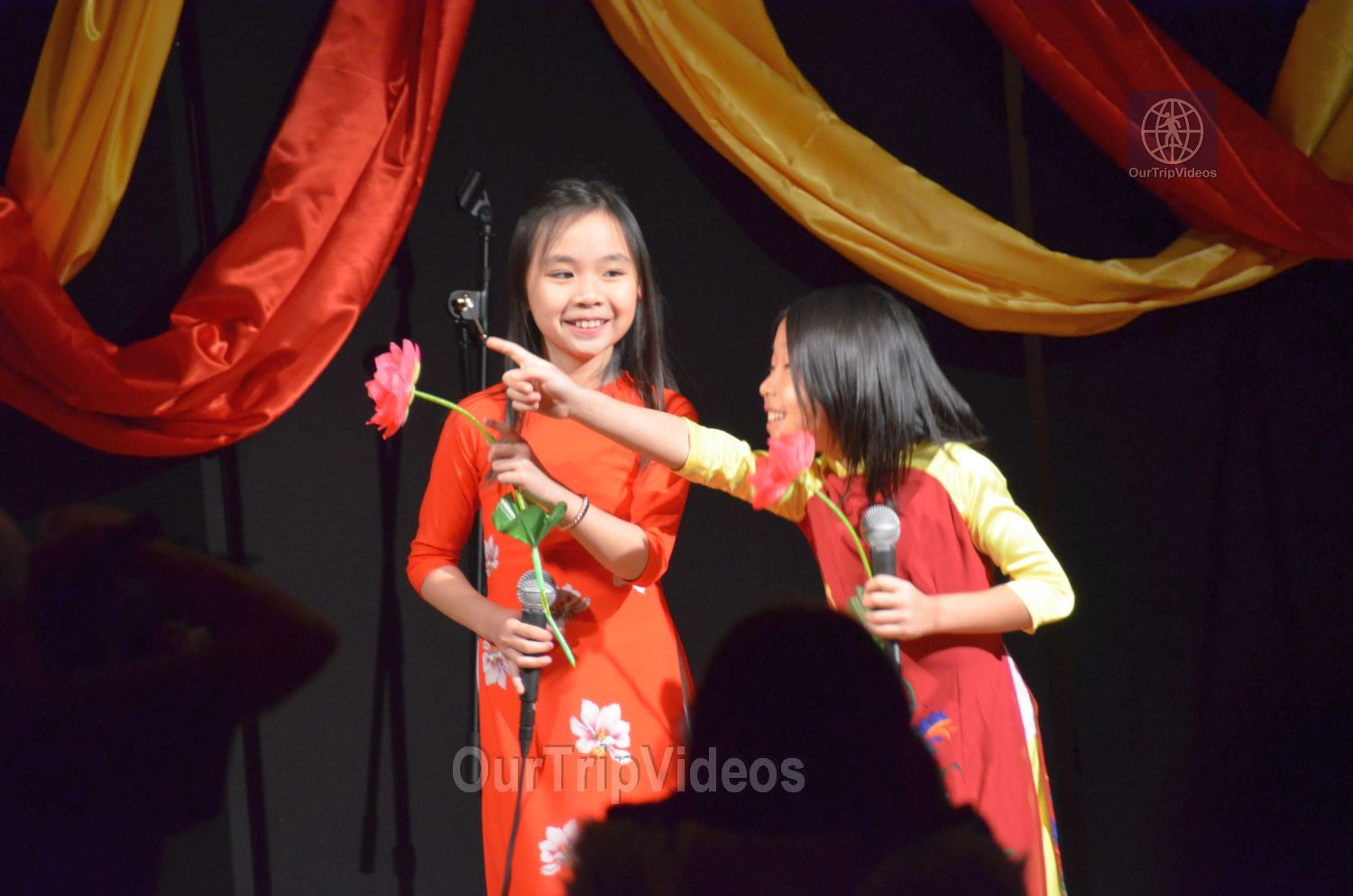 Chinese Lunar New Year Celebration, Milpitas, CA, USA - Picture 16 of 25