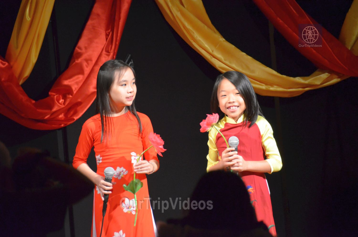 Chinese Lunar New Year Celebration, Milpitas, CA, USA - Picture 17 of 25