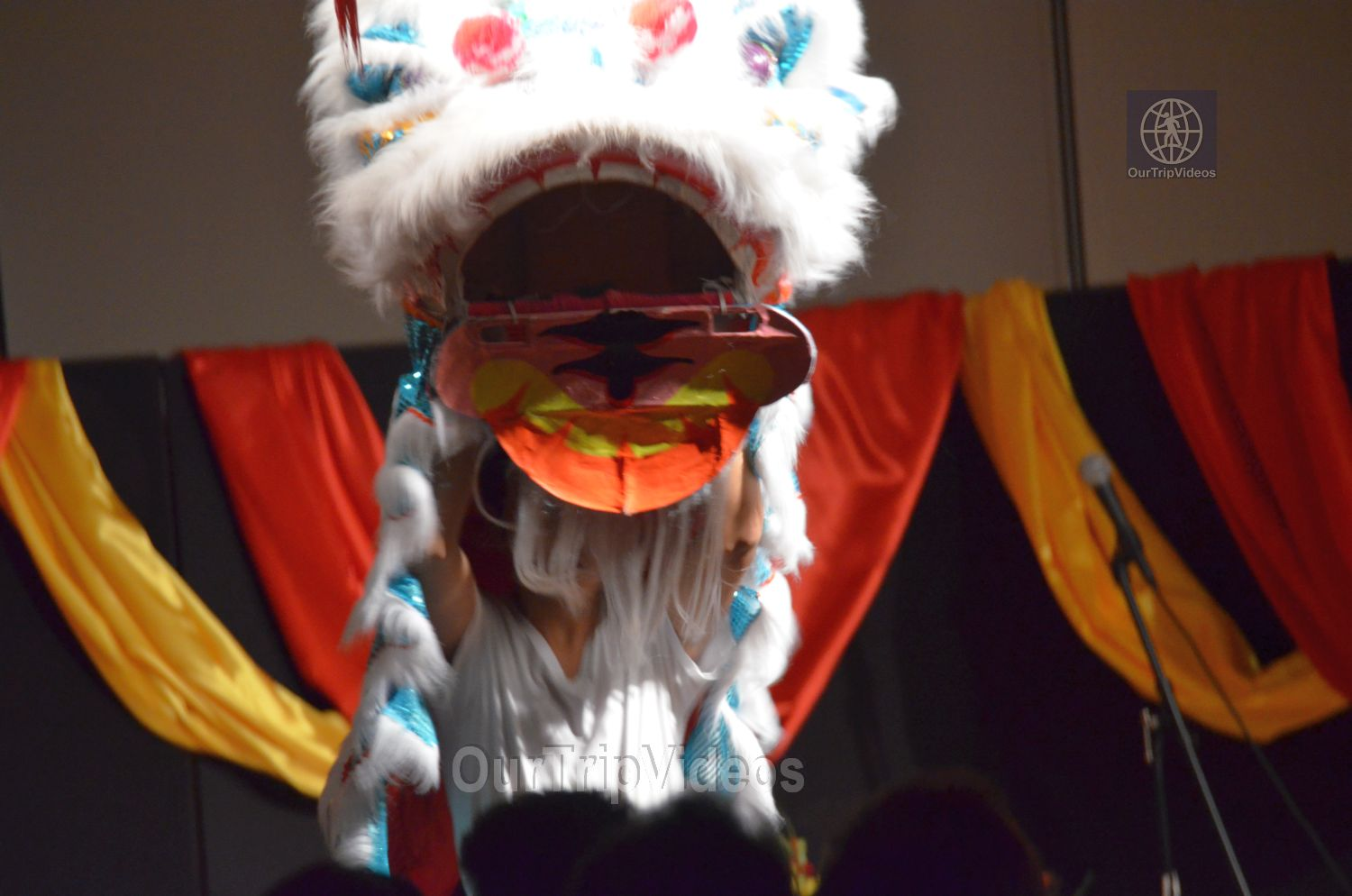 Chinese Lunar New Year Celebration, Milpitas, CA, USA - Picture 20 of 25