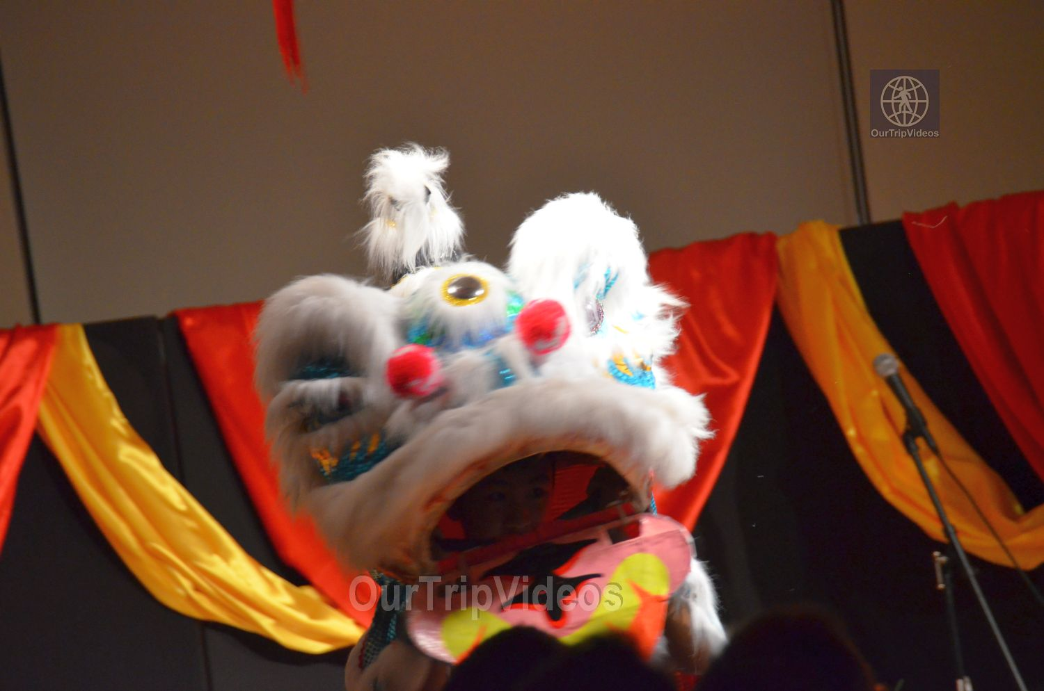 Chinese Lunar New Year Celebration, Milpitas, CA, USA - Picture 21 of 25