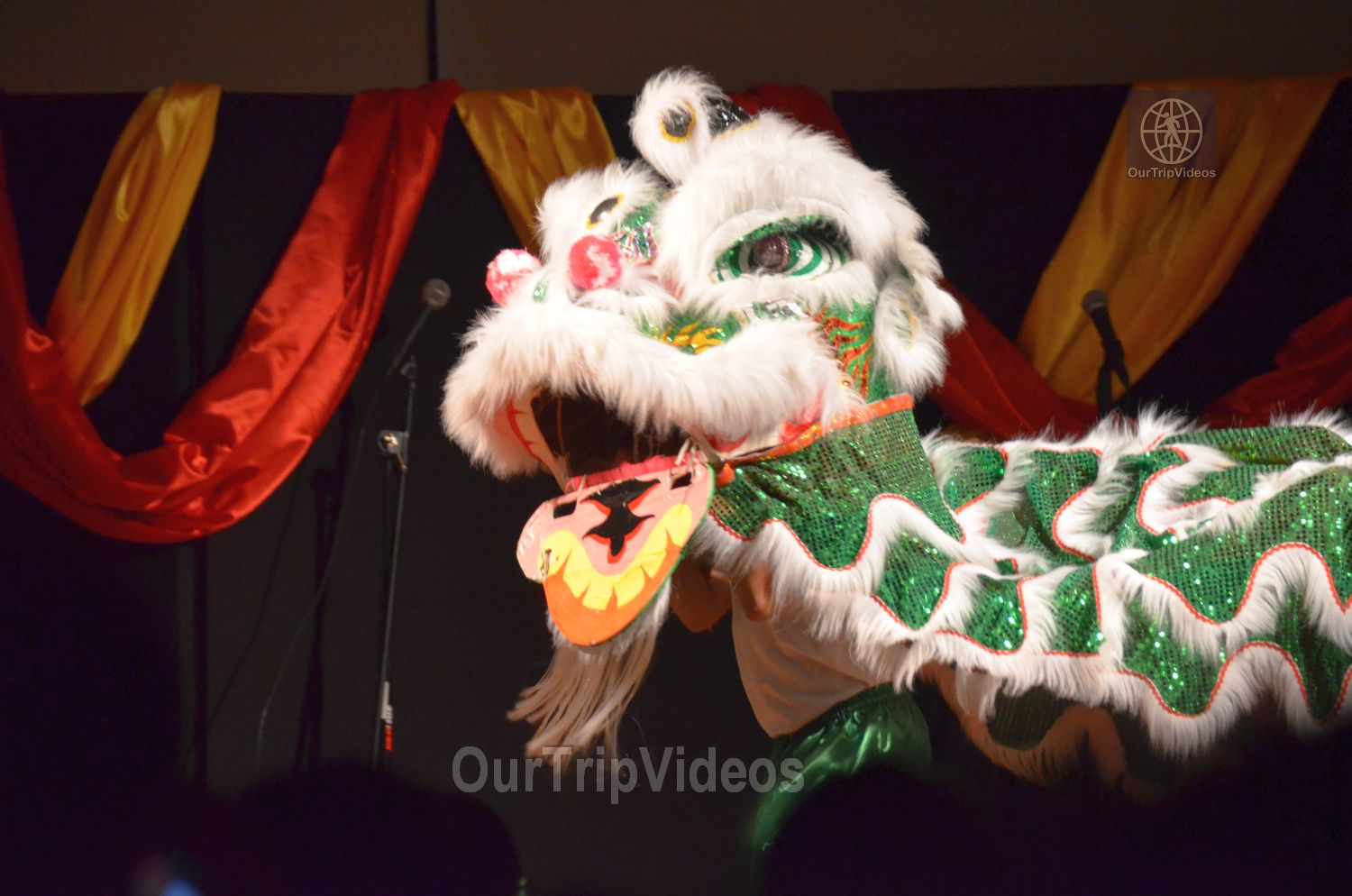 Chinese Lunar New Year Celebration, Milpitas, CA, USA - Picture 23 of 25