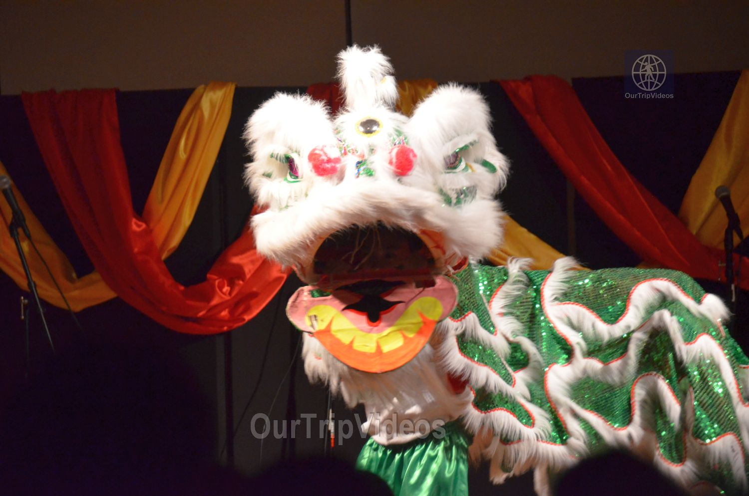 Chinese Lunar New Year Celebration, Milpitas, CA, USA - Picture 24 of 25