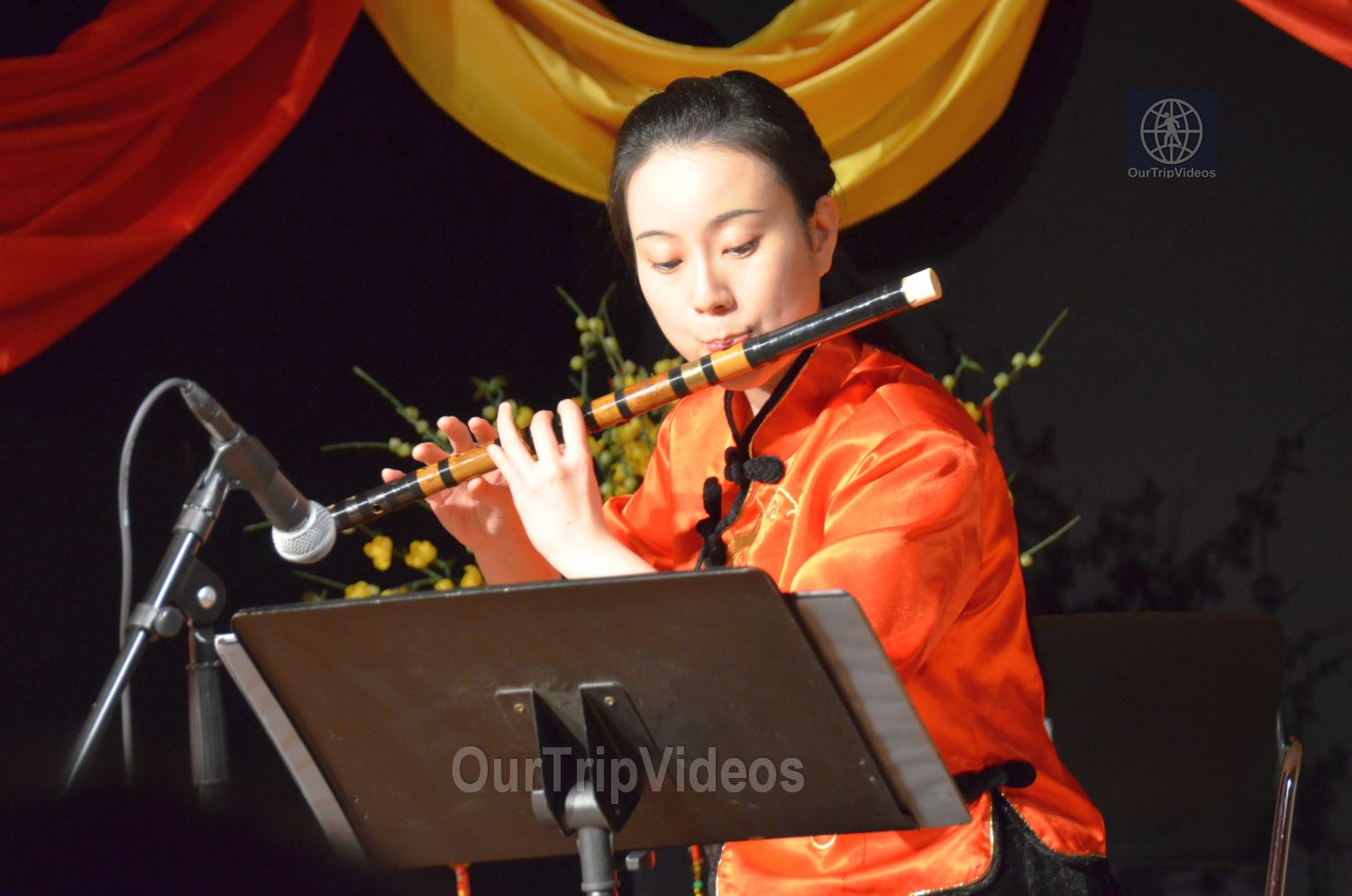 Chinese Lunar New Year Celebration, Milpitas, CA, USA - Picture 30 of 50