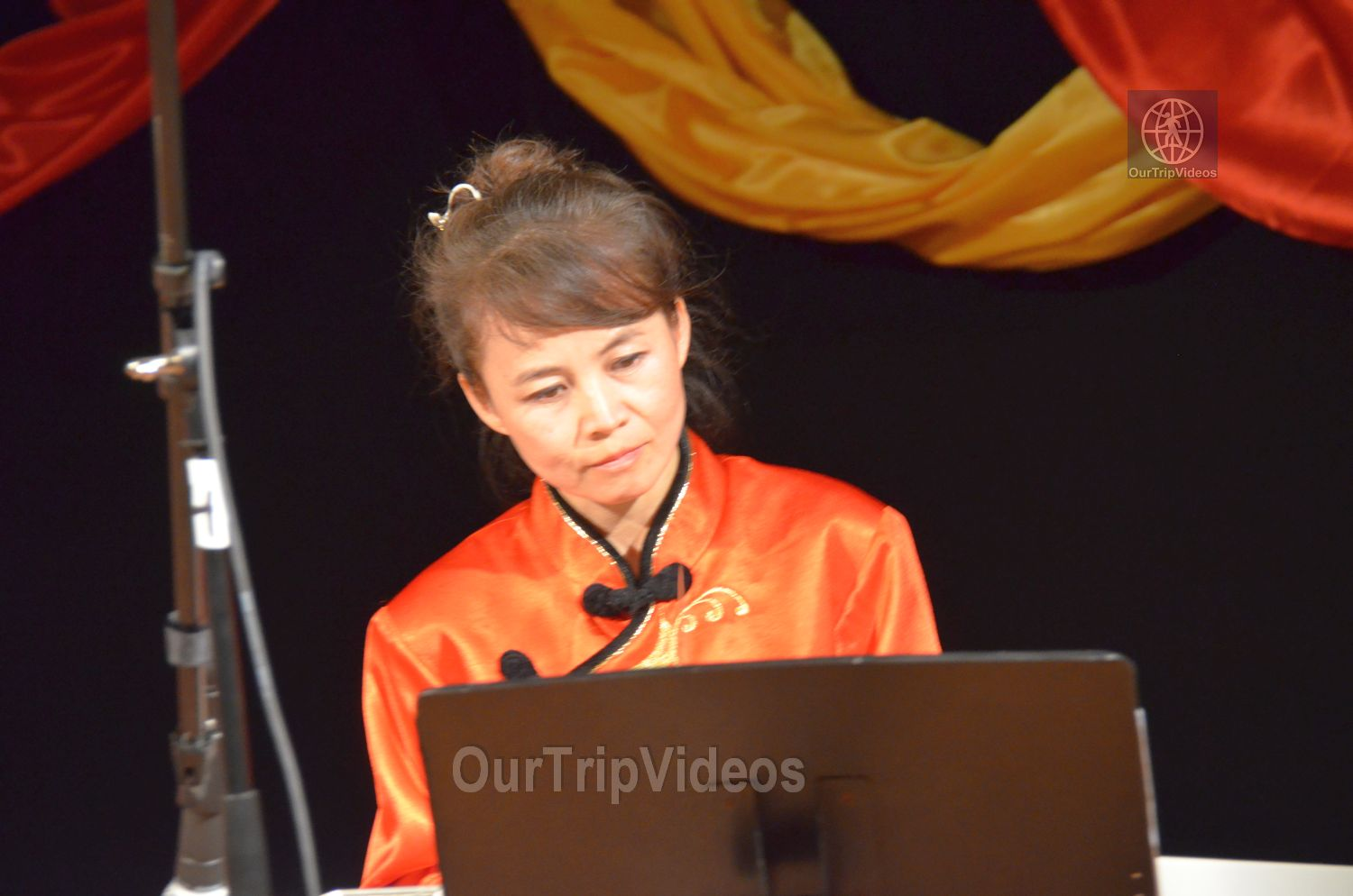 Chinese Lunar New Year Celebration, Milpitas, CA, USA - Picture 34 of 50