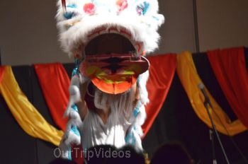 Chinese Lunar New Year Celebration, Milpitas, CA, USA - Picture 20