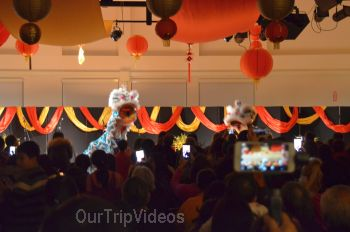 Chinese Lunar New Year Celebration, Milpitas, CA, USA - Picture 22